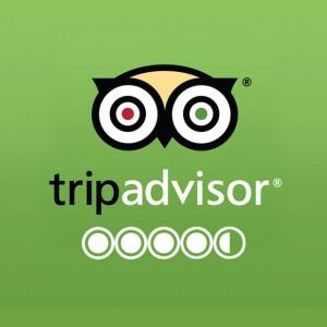 Trip-Advisor-logo2-300x300